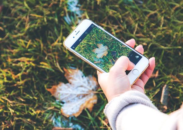 marketing, copenhagen, billedestørrelser, instagram, 2019, markedsføring, social, media, image, sizes, sociale, medier